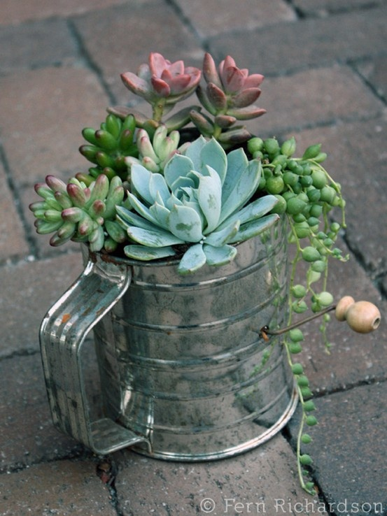 cute planter repurposed from an old sifter, trying to look past the original purpose of the object....