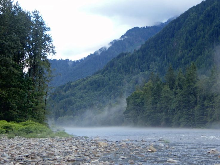 snohomish river - Google Search