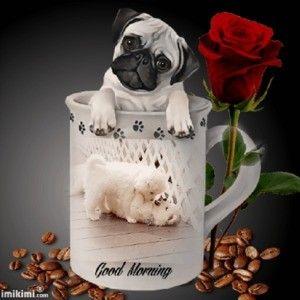 ein Bild für's Herz 'Guten morgen.jpg'- Eine von 1342 Dateien in der Kategorie 'guten-Morgen-Bilder' auf FUNPOT.
