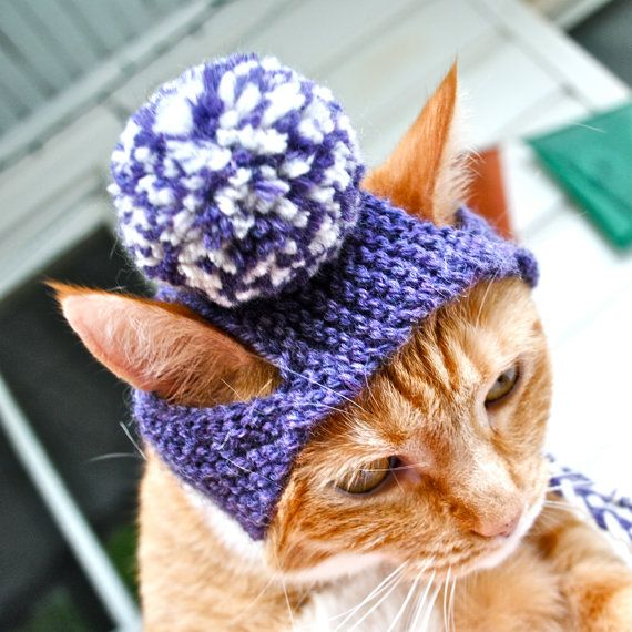 Pom Pom Dog Hat Choose Your Colors Hand Knit Dog от bitchknits