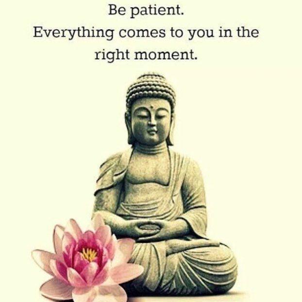 Sharing this quote #buddhism #buddha #lifequotes #judecelebrant