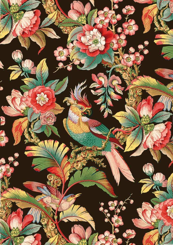 Tropische Blumen des antiken französischen chinoiserie tropischen Vogels tapezieren schwarze Hintergrundillustration