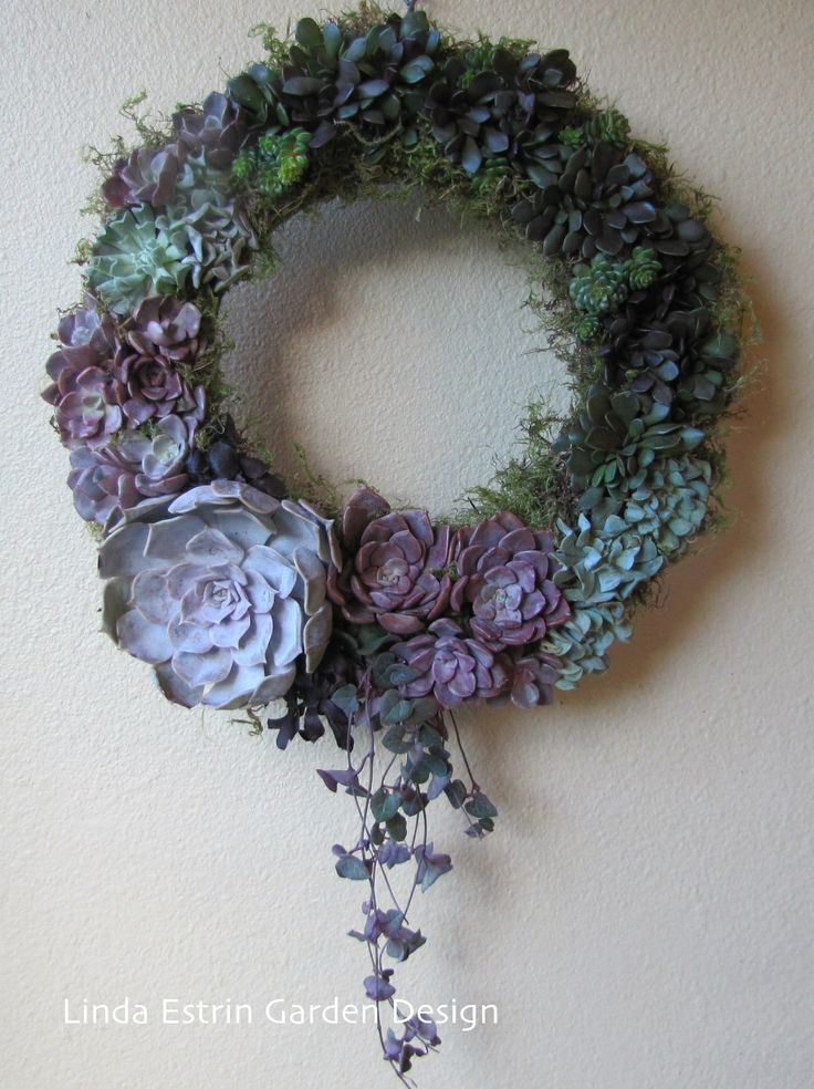 holiday succulent  wreath Linda Estrin Garden Design