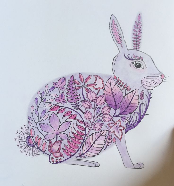 Enchanted forest - Rabbit