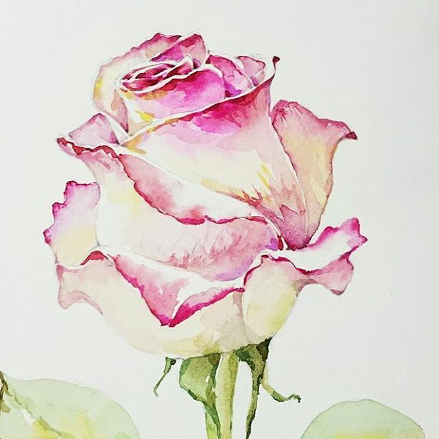 How To Paint A Rose With Watercolors Heimtextil 2018 Frankfurt