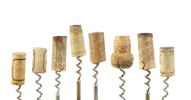 5 WINE TERMS FOR THE NON-SOMMELIER | 5 wine terms to know regardless of your expertise