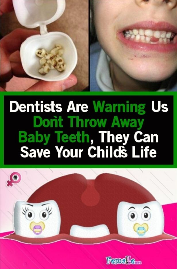 Https Bunny Hoenia Site Wp Content Images Dwag Hnlipv2qyyn Jpg In 2020 Baby Teeth Dentist Toddler Health