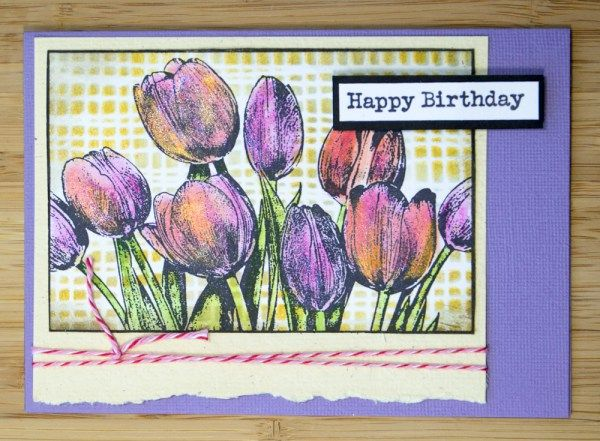 Card by Robyn Wood using Darkroom Door Mesh stencil and Tulips Photo Stamp