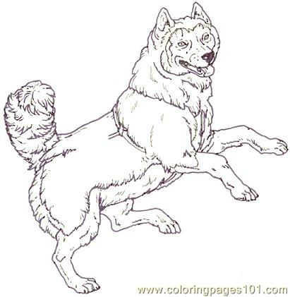 Mural Tsb Sled Dog Jumping Coloring Page For Kids And Adults From Mammals Pages