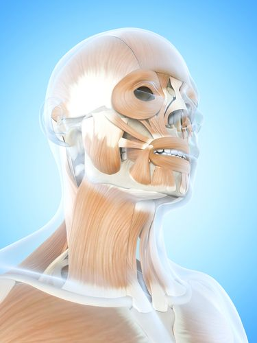 Facial Exercises for an All-Natural Neck Lift
