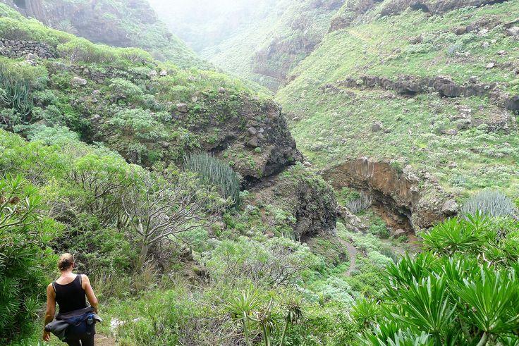 De kloof tussen Gallegos en Franceses, La Palma-noord.