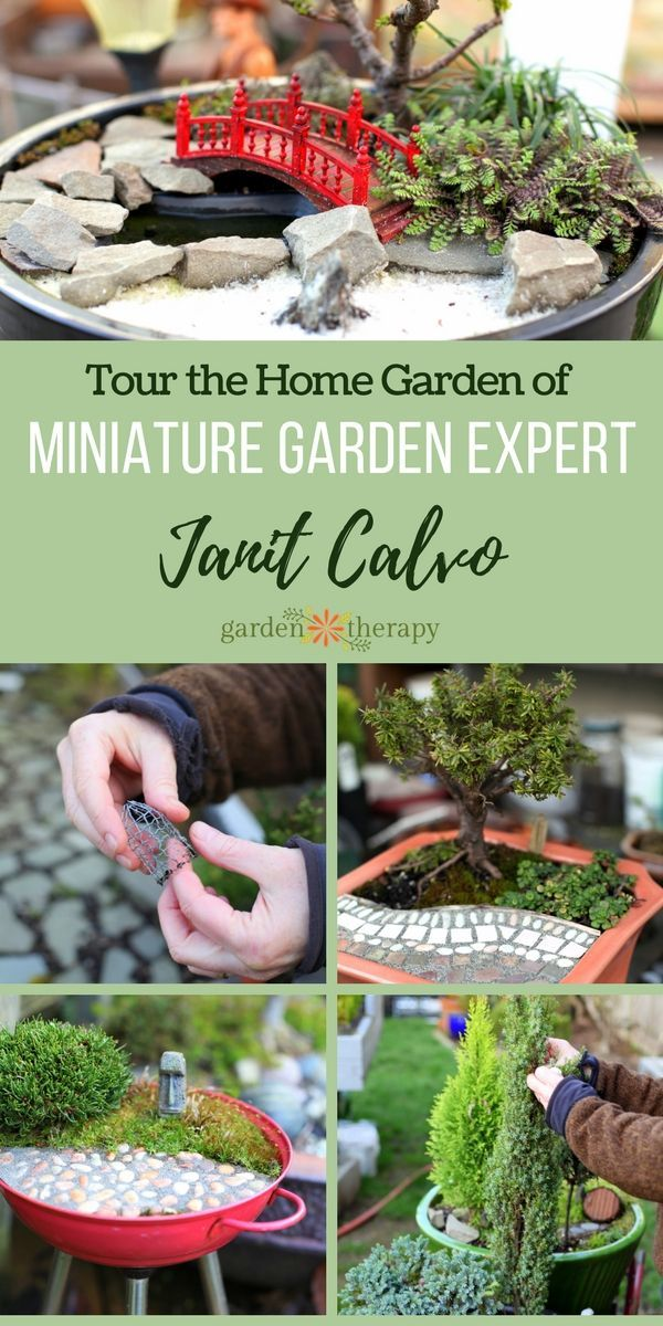 Miniature Garden Tour - The most fascinating garden ideas come from touring unique gardens, and there is none more unique than the Seattle garden of best-selling author and Miniature Garden Guru, Janit Calvo. Janit lives in a full-size house surrounded by whimsical miniature gardens both in-ground and in pots. Come tour her garden!