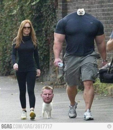 Holy s**t...Real People, Face Swap, Real Life, The Real, Funny Stuff, Johnnybravo, Holy Cows, The Incr, Johnny Bravo