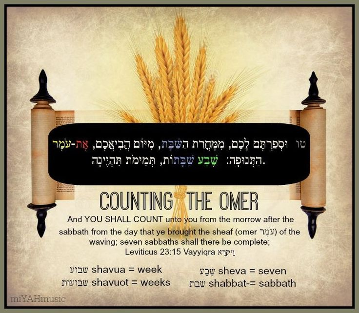 Image result for counting the omer
