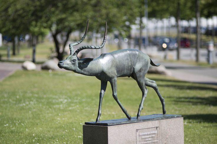 #Lübeck Die schreitende Antilope holt eine ordentliche Portion Exotik in die Hansestadt. Anmutig bewegt sich das naturnah gestaltete Tier mit vorgestrecktem Kopfundwachsamen Augen. Fritz Behn wurde 1878 ...