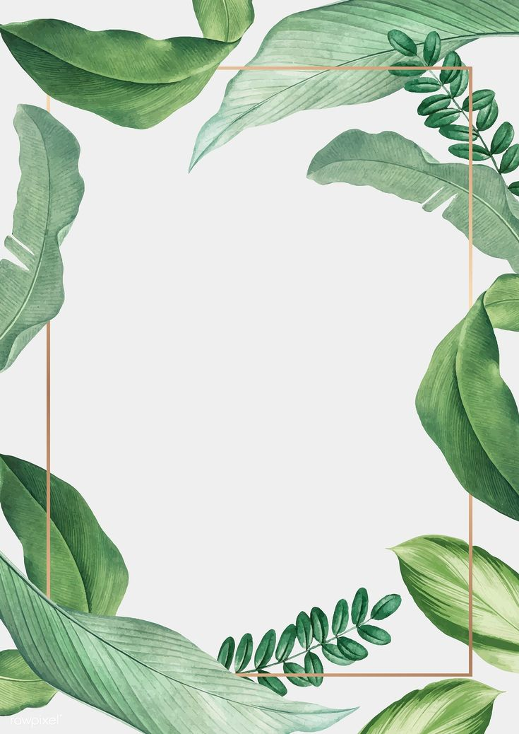 Download premium vector of Hand drawn tropical leaves white poster vector