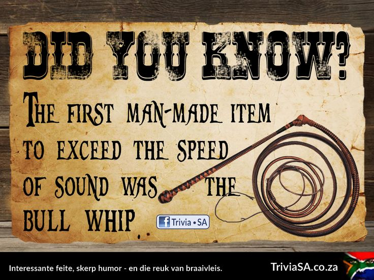 """The first man-made item to exceed the speed of sound was the bull whip. (This """"did you know"""" card was designed by AdSpark: http://adspark.co.za)"""