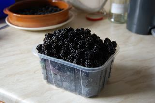 Blackberry jelly recipe - another thing I'm going to make this year! :)