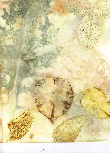 eco print bristol vellum paper, via Flickr.
