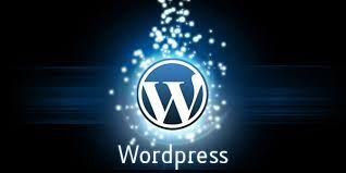 WORDPRESS  Tiger IT Services provides you open source content management system for webappilcaton.