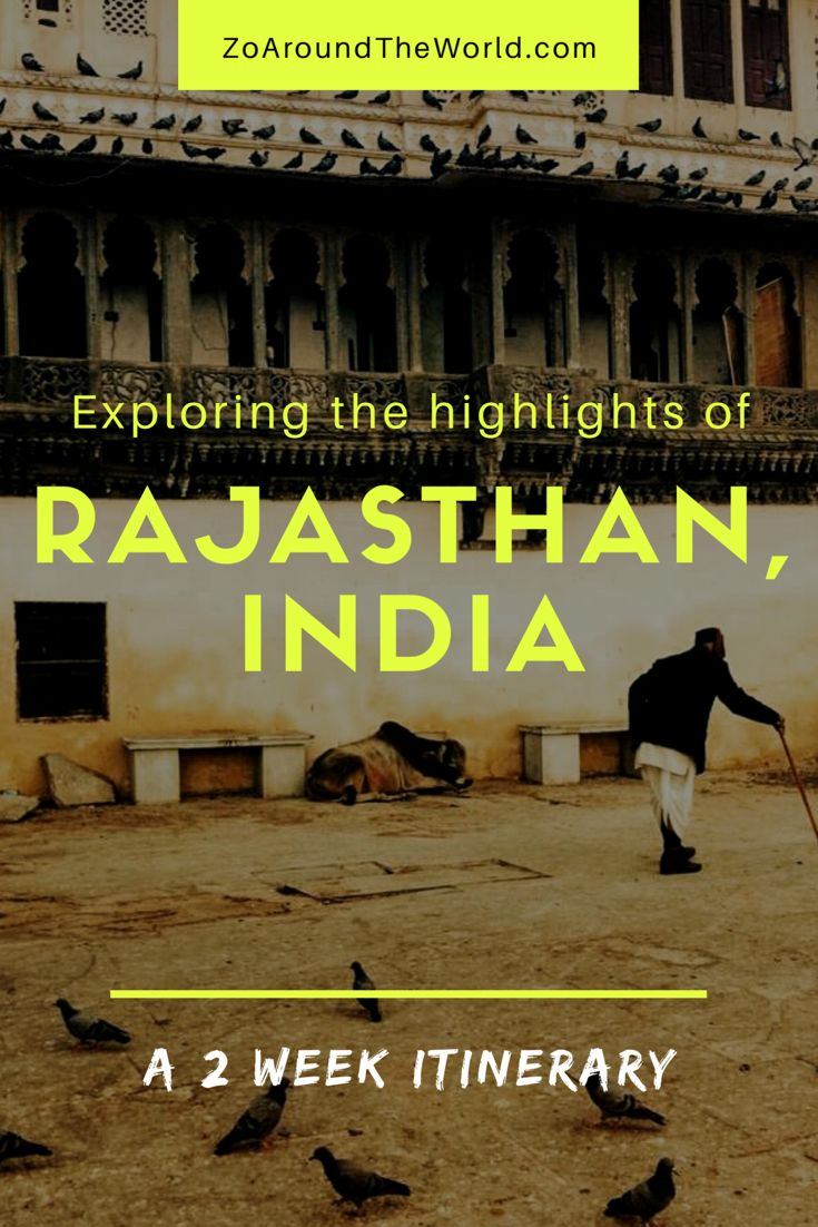 Palaces, forts, camels, spices and lots more. Here's how to explore Rajasthan in 2 weeks!