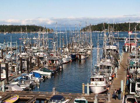 nanaimo bc fishing fleet