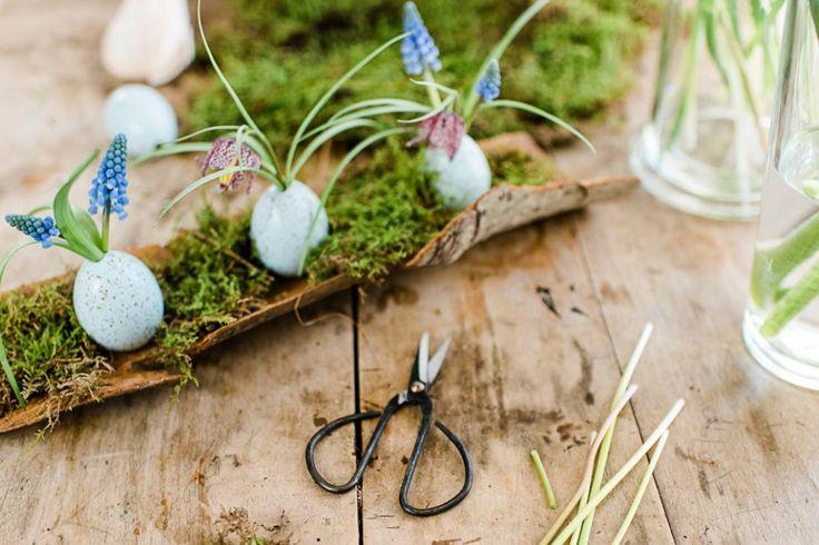 Décoration de bricolage pour Pâques: De jolis œufs dans l'écorce des arbres   – Oster-Bastelei