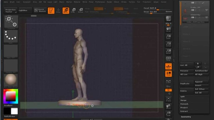 Real World Measurement in ZBrush