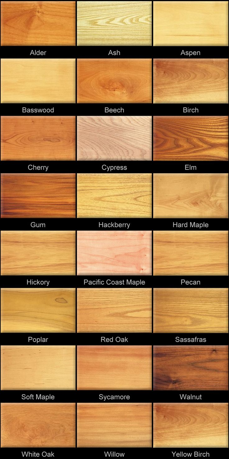 Types Of Wood ~ Wood floor species guide gurus