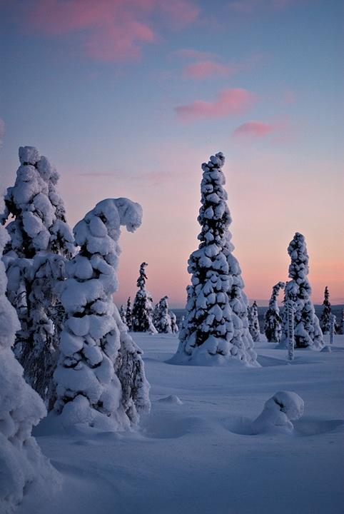 Sunset in Lapland, near Ylläs, Finland.