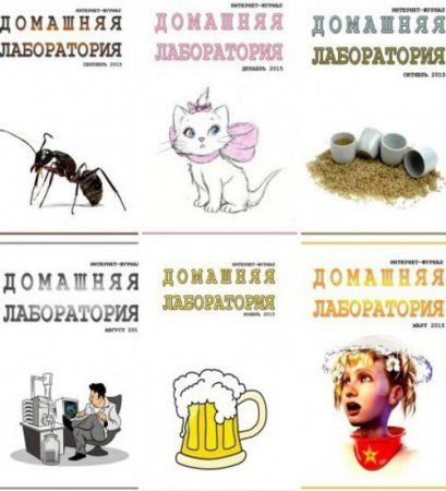Подшивка журнала - Домашняя лаборатория №1-12 (январь-декабрь 2015) DJVU
