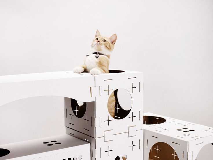 BLOCKS by Poopy Cat is a modular package that contains recycled cardboard modules and connectors so you can easily build a custom playhouse for your cat.