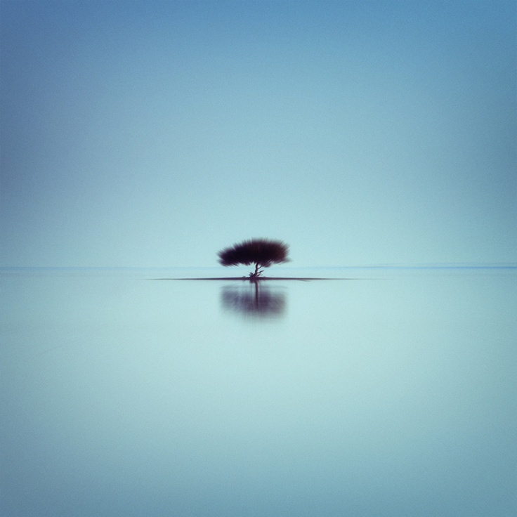 Lost In Serenity