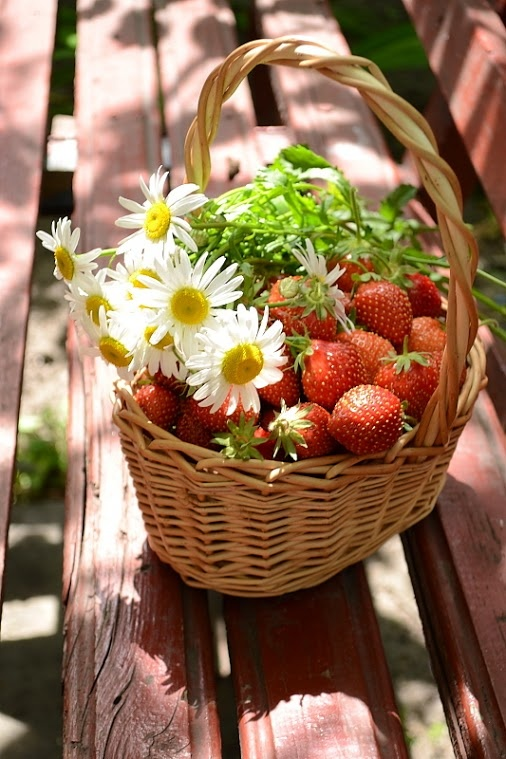 # fruit #: Fruit Gardens, Berries Nice, Flavored Fruit, Fruit Photography, Strawberries Baskets, Fruit Pictures, Blog Enterbío, Happy Fruit, Fresh Fruit