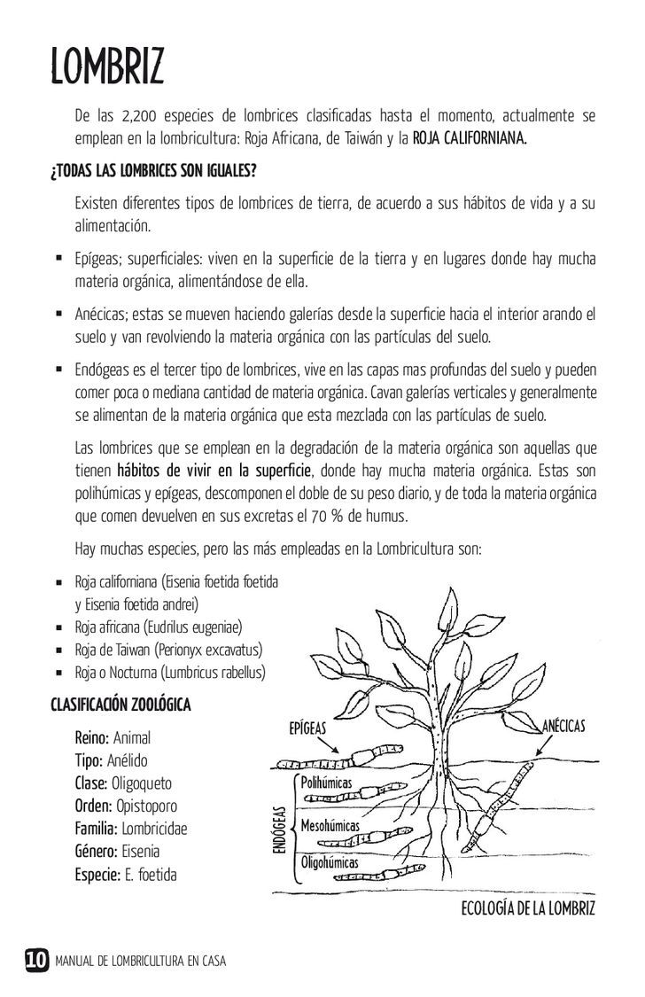 Manual de lombricultura en casa | PDF to Flipbook