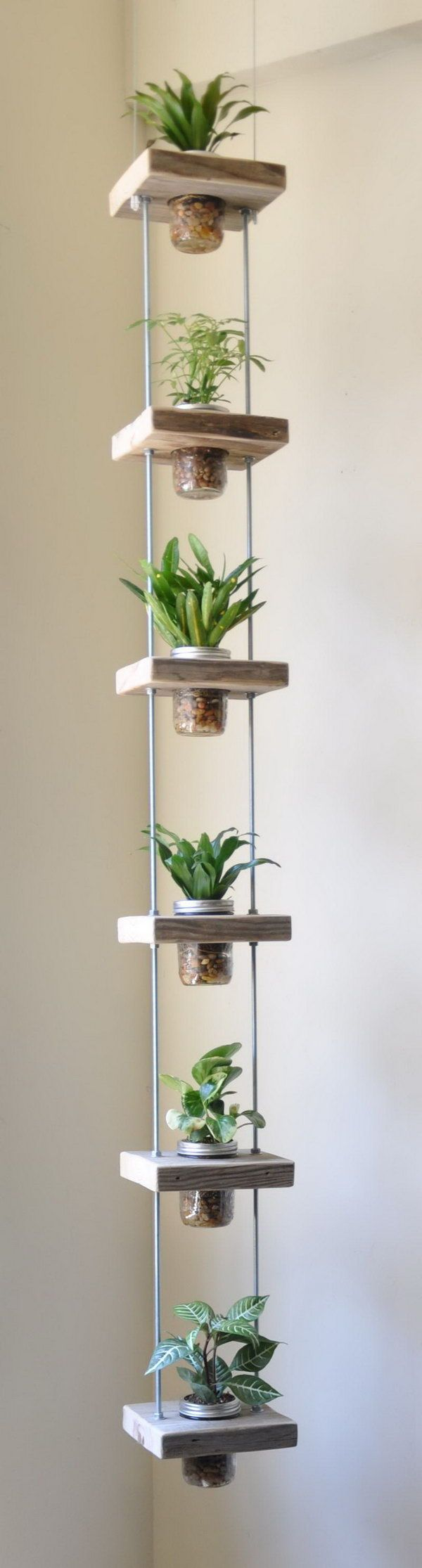 Vertical herb garden from salvaged wood and mason jars.