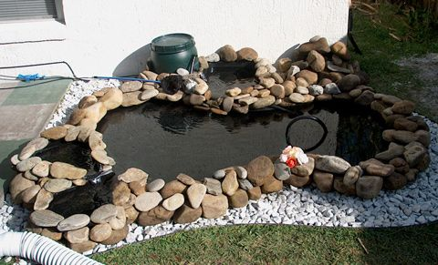 25 Best Ideas About Plastic Pond Liner On Pinterest Tractor Tire Pond Pond Liner And Plastic