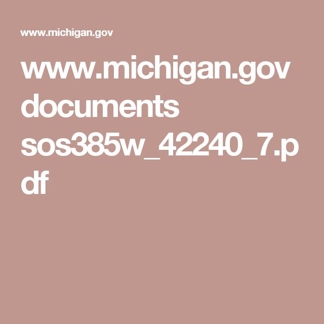 www.michigan.gov documents sos385w_42240_7.pdf
