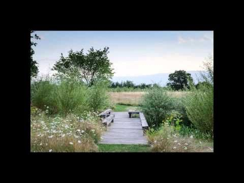 ART OF THE GARDEN: Dan Pearson, The Garden as Vision - YouTube