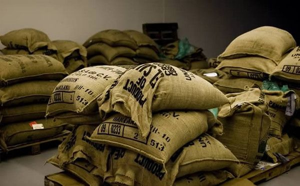 how to sell coffee beans wholesale