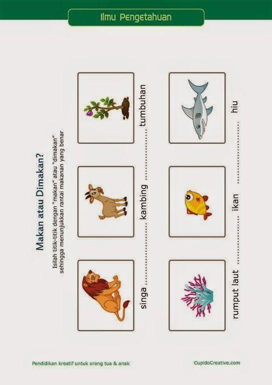 belajar ilmu pengetahuan anak kelas 3 SD, rantai makanan, pemangsa & mangsa