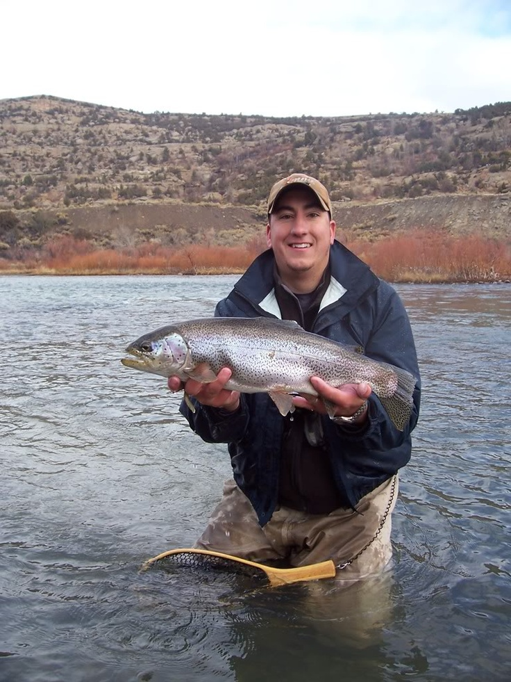 Rainbow Trout Fishing In New Mexico Rainbowtrout