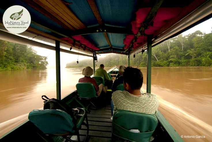 Travelling on catamaran will be an interesting and full adventure experience because you will make trips through the sinuous rivers of the Amazon. You can visit the macaw clay lick, and do many excursions in oxbow lakes. Visit Heath River Wildlife Center! #ikexperiences #amazontours #HeathRiverLodge #Peru http://www.inkanatura.com/en/tambopata-tours-and-lodges/heath-river-logde/two-ecosystems-rainforest-savannah-4d-3n