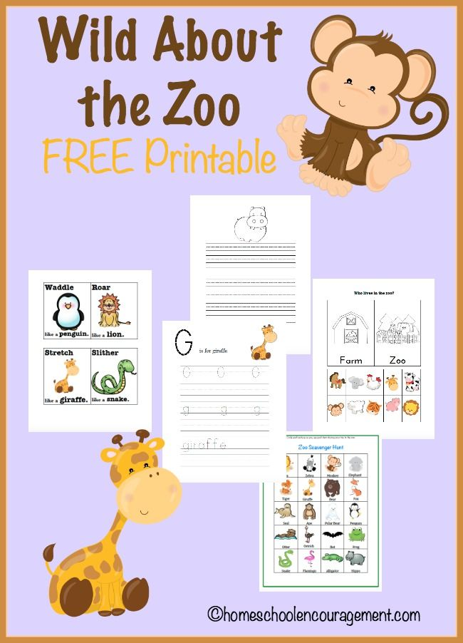 Wild About the Zoo free printables - free worksheets for kids - homeschool
