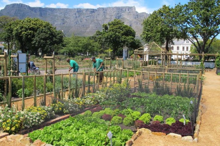 Attractions Imagery – Cape Town Tourism