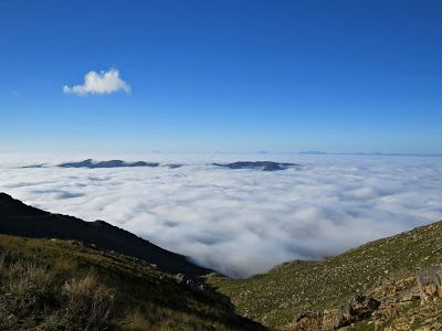 Karoo Hues: FLOATING ABOVE THE CLOUDS Sometimes we say we feel...