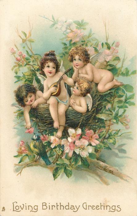 LOVING BIRTHDAY GREETINGS four cherubs in nest, one holds mandolin