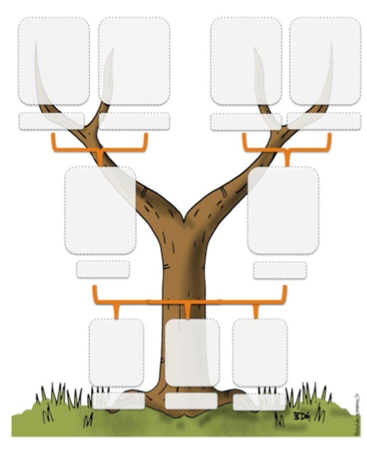 Apprendre en jouant : apprenez à votre enfant ses racines et le temps en recréant votre arbre généalogique!
