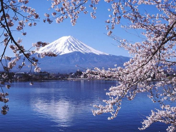 Image result for japan landmarks