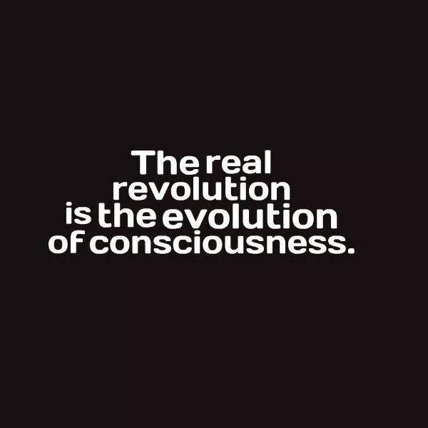 A Verdadaeira revolução é a evolução da consciência! translates as: True revolution is the evolution of consciousness!